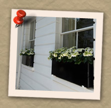 Bespoke Window Boxes